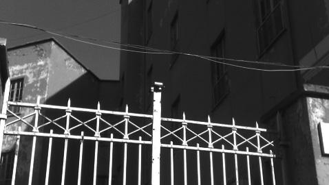 Scuola Parini: un video di Ballarò ne segna la fine?
