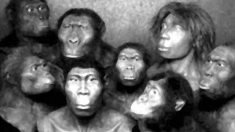 L'Europa al tempo dell'evoluzione genetica: chi eravamo e chi siamo
