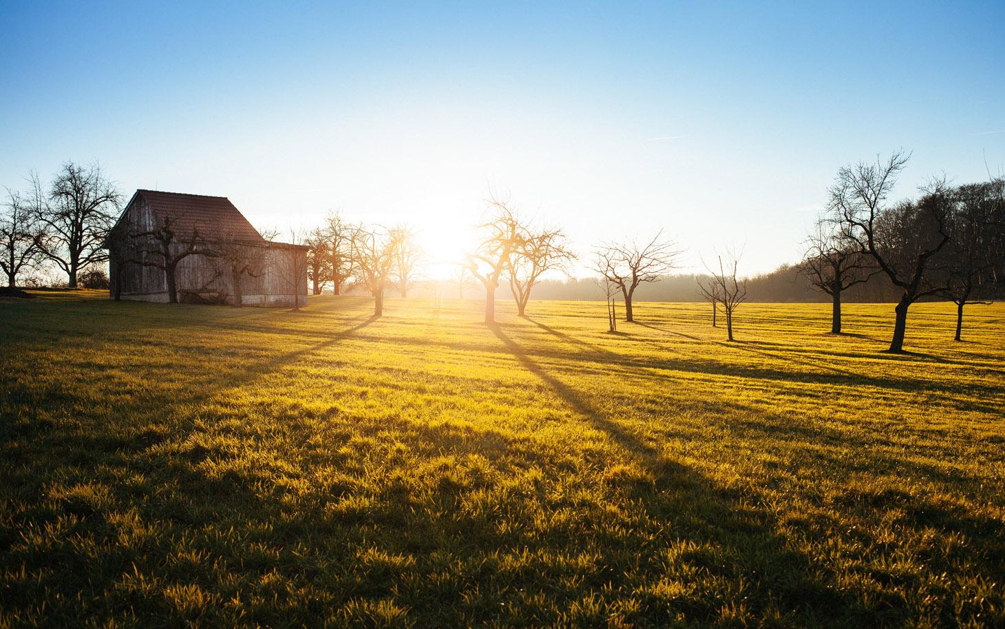 landscape-farm