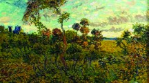 Il Van Gogh ritrovato scuote mondo delľarte
